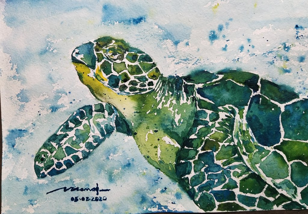 Dt: 05.08.2020 Sub: Turtle Slow and steady wins the batle, say the turtle. Watercolor painting on ha