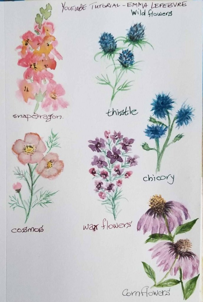 Practicing flowers… one or two a day… wildflowers cosmos practicewildflowers so farwildf
