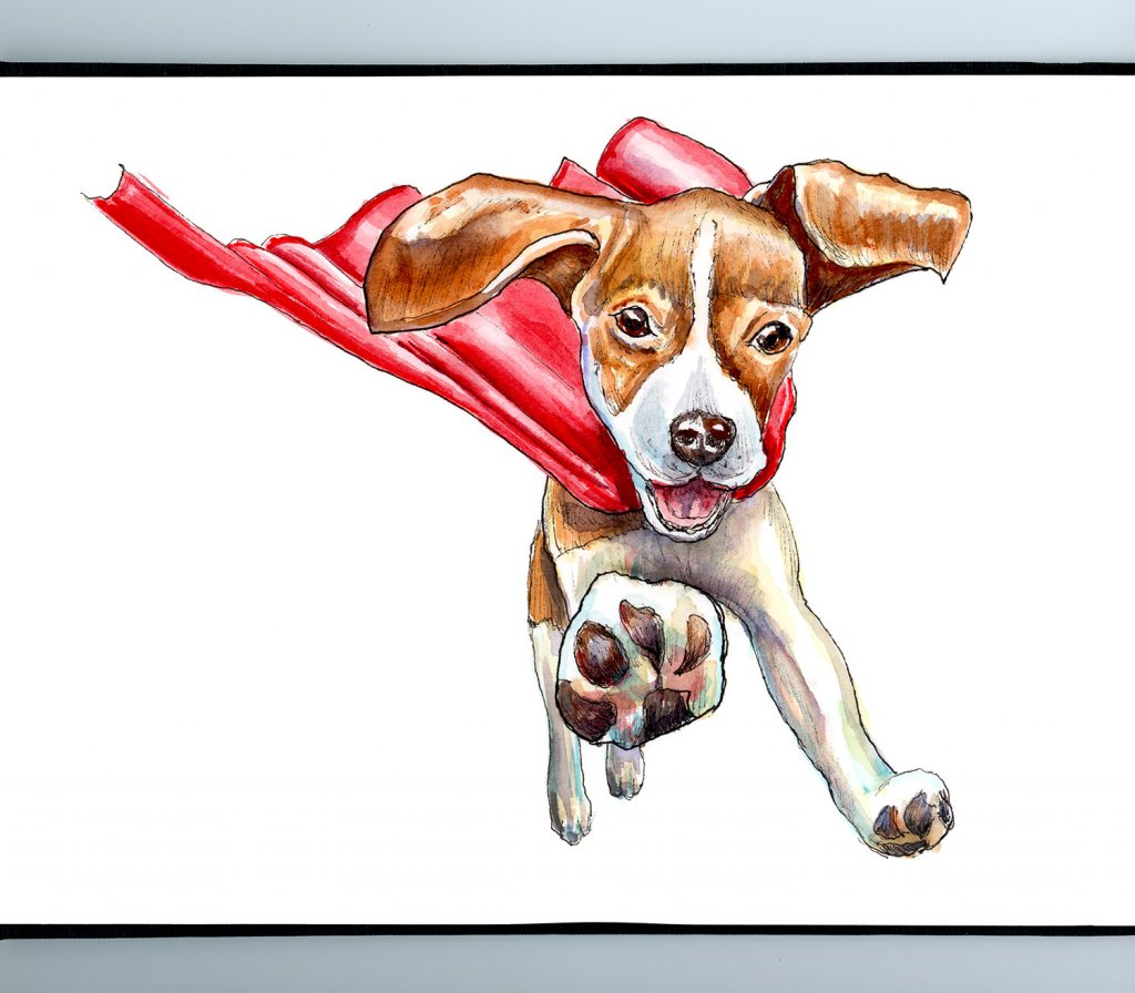 Flying Dog Super Hero Watercolor Painting Illustration Sketchbook Detail