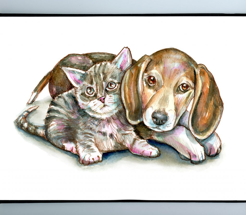 Kitten Puppy Dog Cat Sitting Together Watercolor Painting Illustration Sketchbook Detail