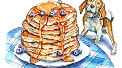 Beagle Dog Looking Up At Pancakes On Table Watercolor Painting Illustration