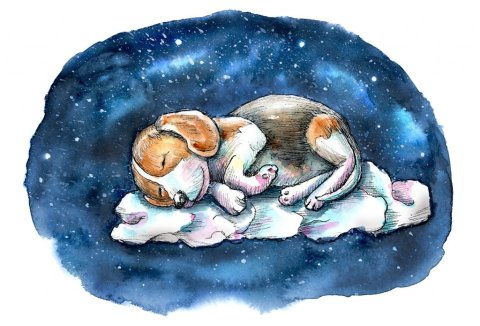 Sleeping On A Cloud Dog Beagle Puppy Watercolor Painting Illustration