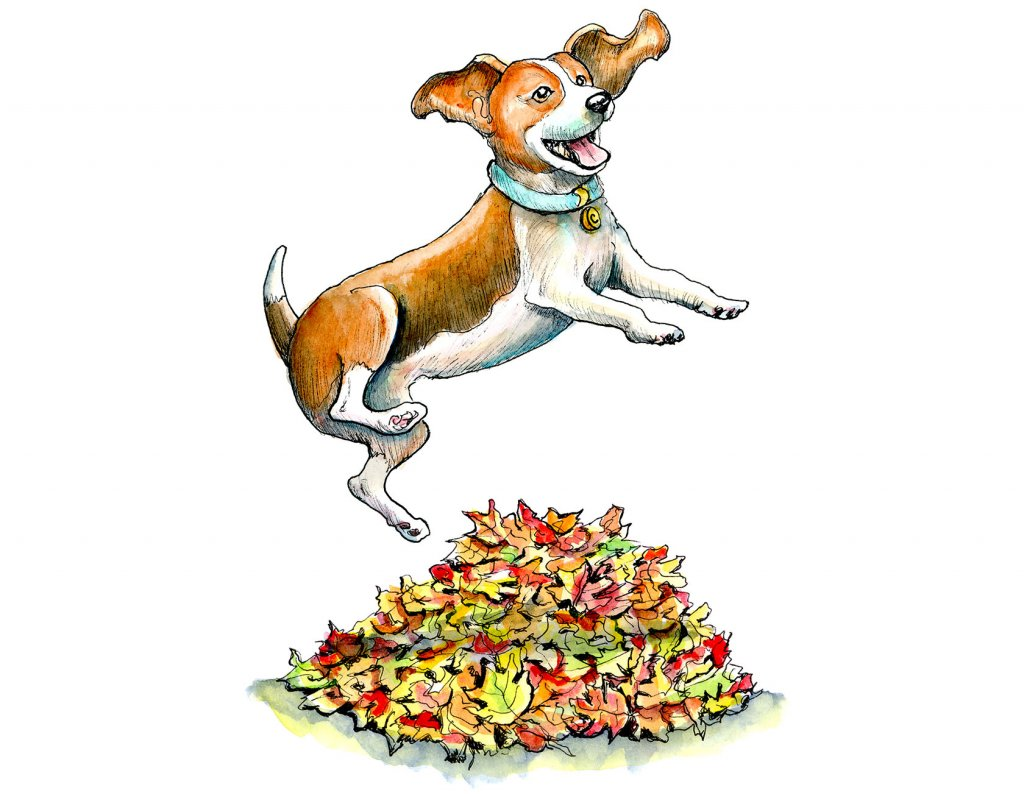 Dog Jumping Into Autumn Fall Leaves Watercolor Illustration Painting