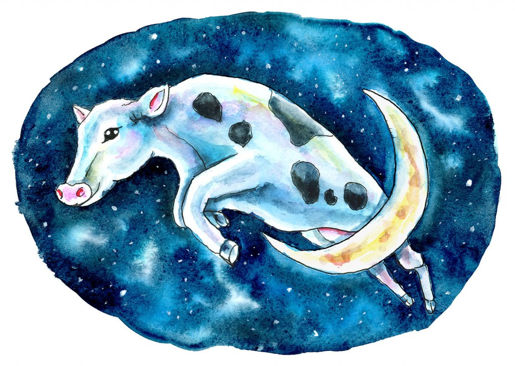 Cow Jumped Over The Moon Watercolor Illustration Painting