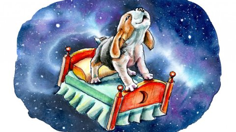 Galaxy Sky Dreams Beagle On Bed Watercolor Illustration Painting