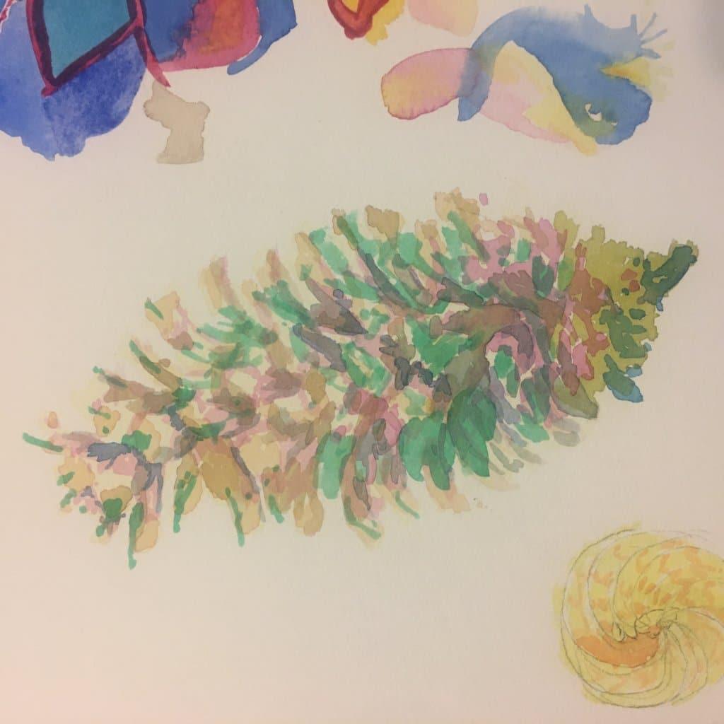 An older sketch of a pine cone 11C71C24-50FB-4C4A-A726-C88572D11128