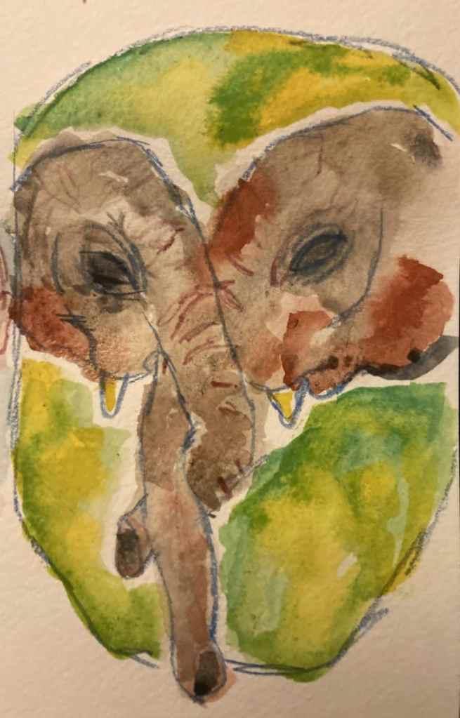Elephant reunion 31370918-AA7D-42BB-B7E3-1831D1B86BC9