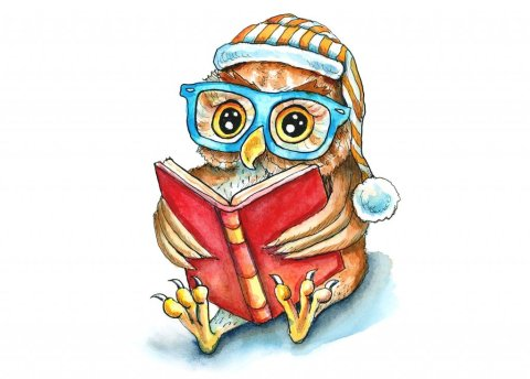 Owl Reading Book In Glasses Night Cap Watercolor Illustration Painting