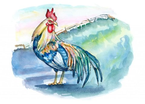 Rooster Sunrise Farm Rural Watercolor Illustration Painting