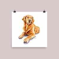 Golden-Retriever-Watercolor-Illustration_Signed_mockup_Transparent_Transparent_10x10 Watercolor Print