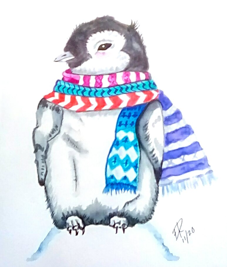 "Today's watercolor challenge ""Scarf"" . You know that it's cold when a pengui"