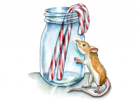 Mouse Candy Canes Mason Jason Watercolor Illustration Painting