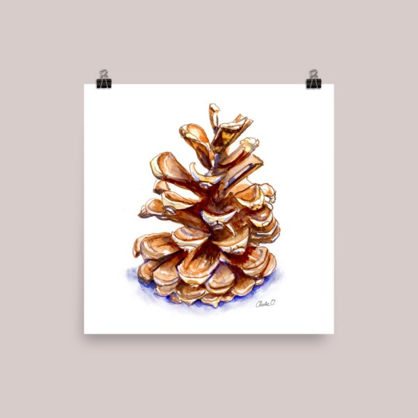 Pine Cone Winter Holiday Watercolor Illustration Print Signed