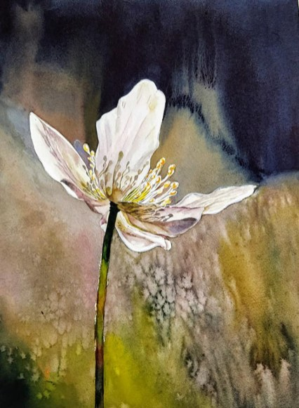 Flower Watercolor Painting by Ashwini Rudrakshi