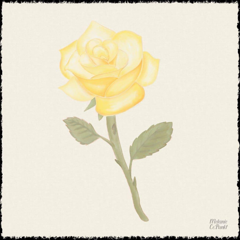 Watercolor 210207_rose_yellow
