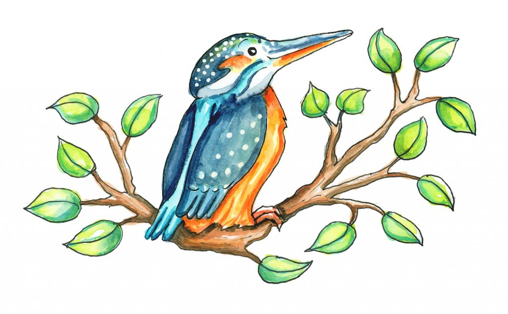 Cute Kingfisher Bird Cartoon Watercolor Illustration