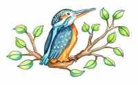 Cute Kingfisher Bird Cartoon Watercolor Illustration