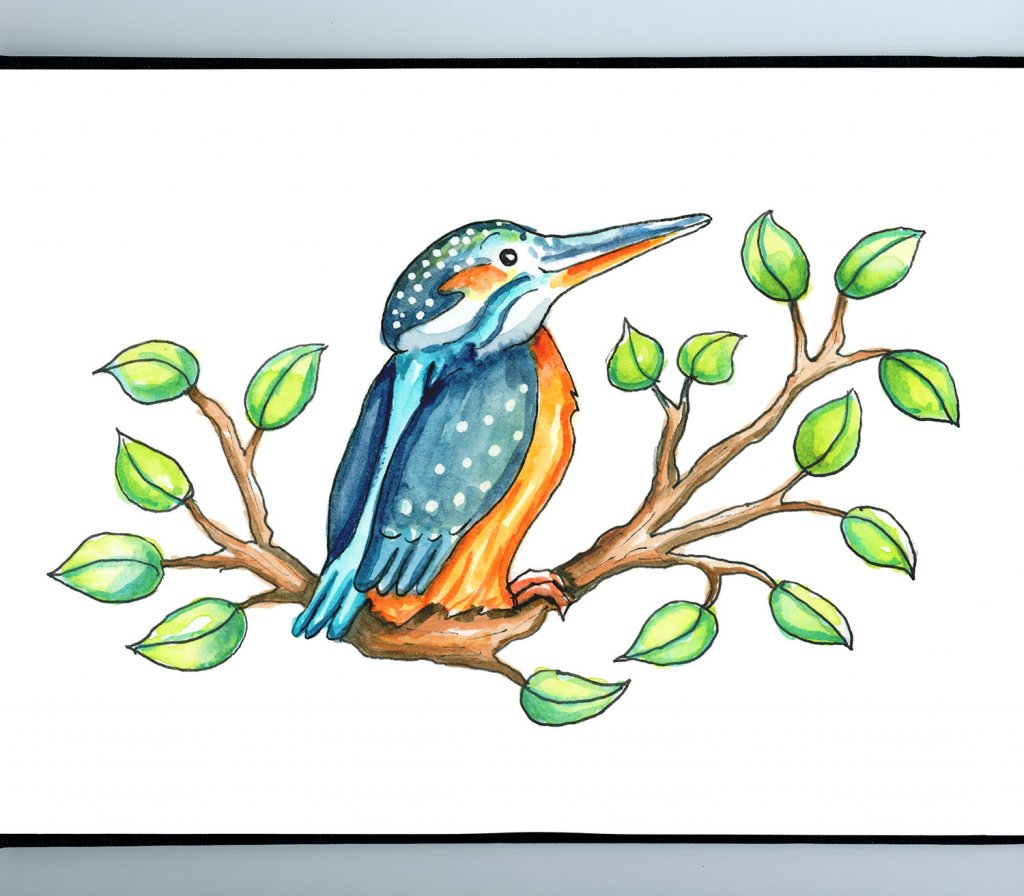 Cute Kingfisher Bird Cartoon Watercolor Illustration Sketchbook Detail