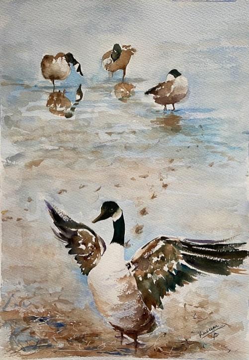 Ducks watercolour painting by Kusum Shabong