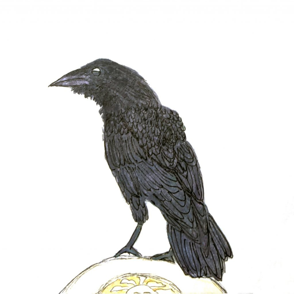 Ravens live everywhere so this is my SEABIRD. May it bring you awakening and new opportunities. Base