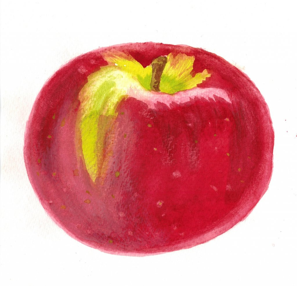 I caught up on one of the prompts. I had been looking forward to trying an apple. #doodlewashfebruar