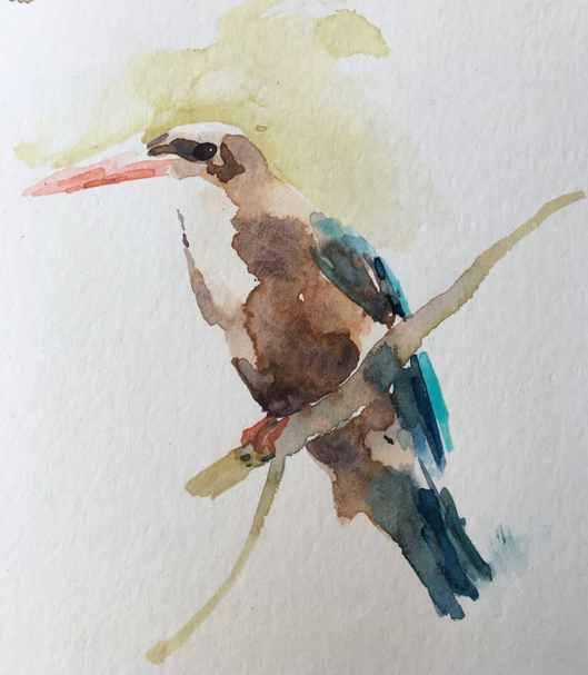 kingfisher watercolour painting by Kusum Shabong