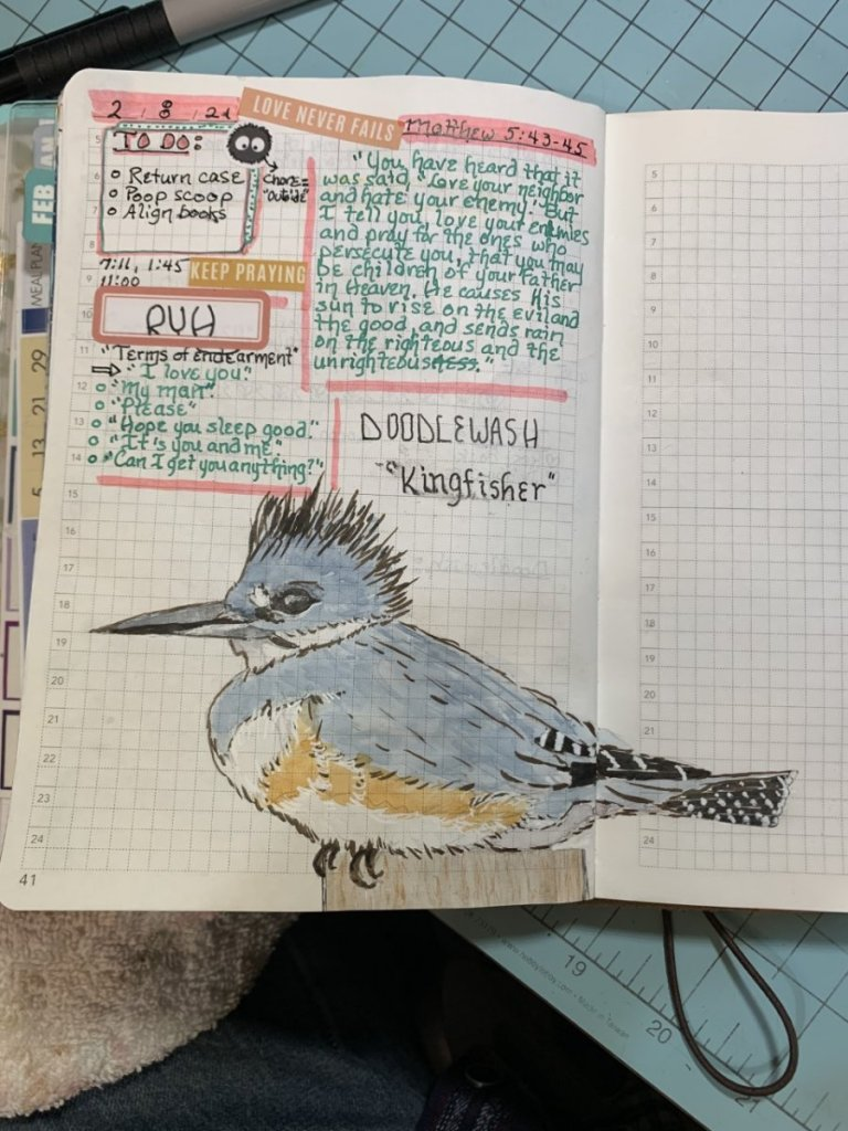 """Feb. 8, 2021 prompt """"Kingfisher"""" thumbnail_63454235952__37BB8C7B-0B65-4F52-82B7-3D8C5C9F"""