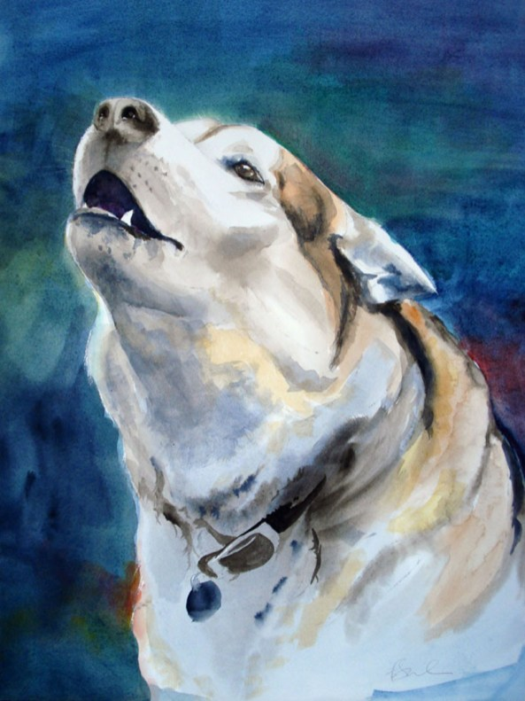 Dog Watercolour Painting by Eva Smith