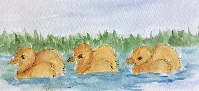 #doodlewashmarch2021 day 8 duckling IMG_2931