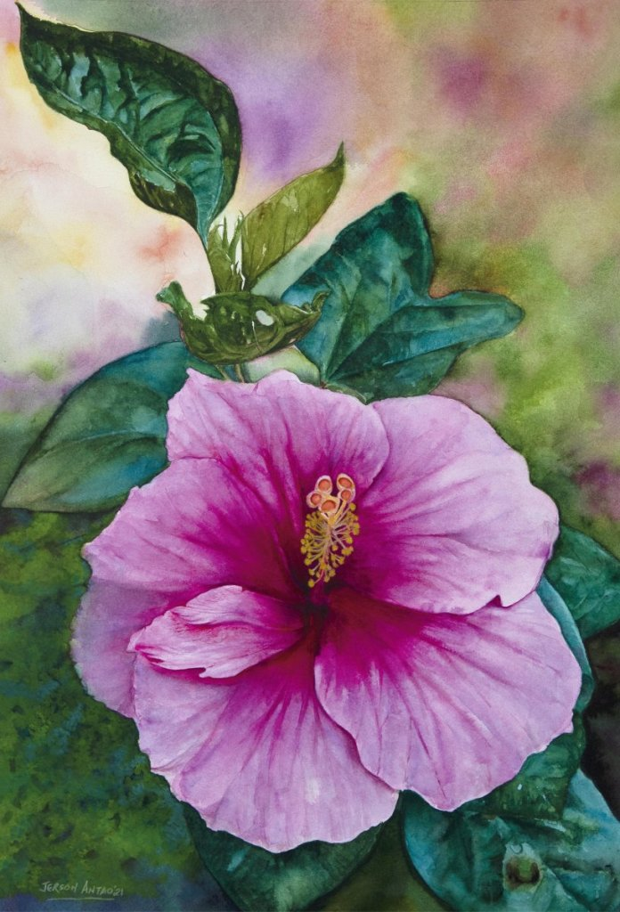 """""""Hibiscus""""..straight from my garden on to my canvas..😊 Watercolour on Lanaquarelle 3"""