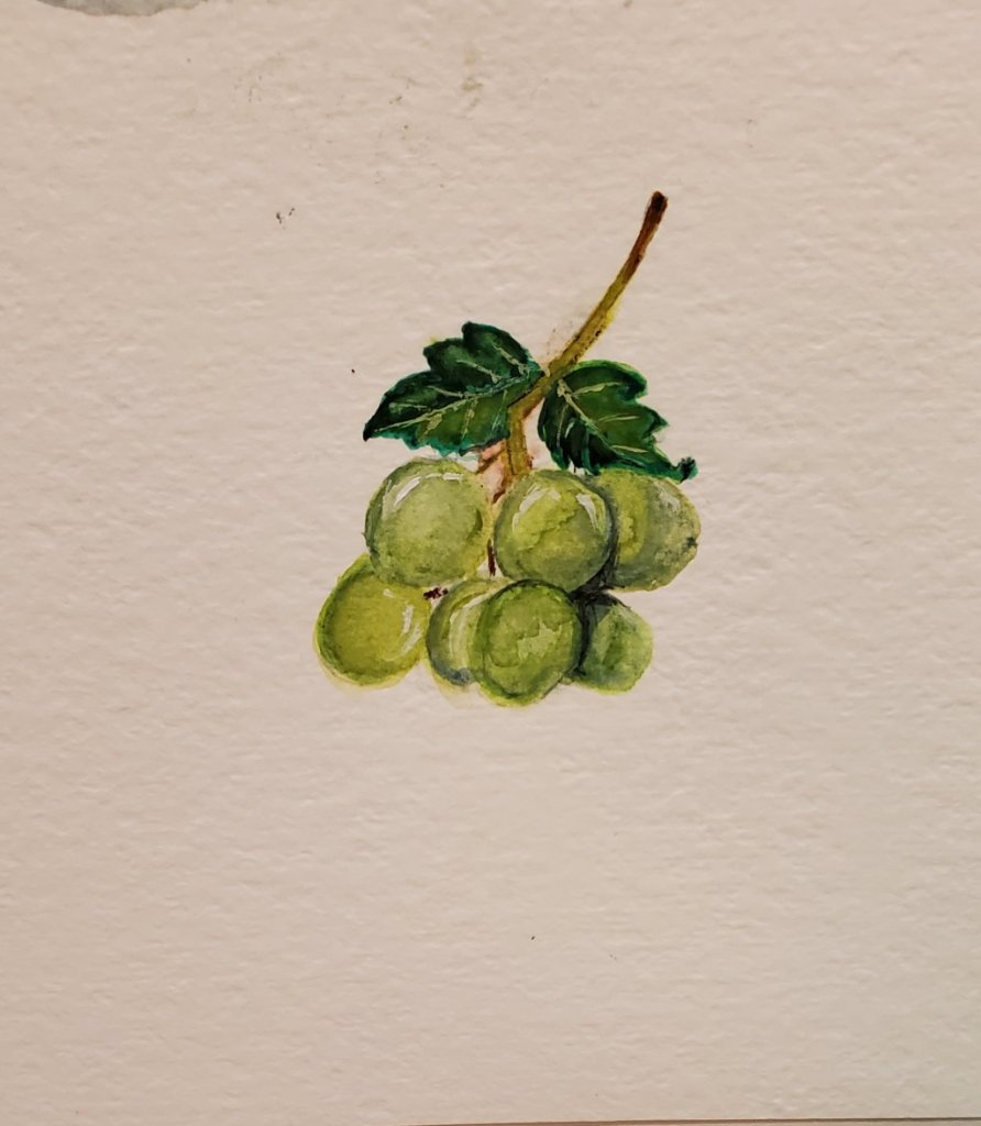 13/4 prompt Grapes . 20210412_235953