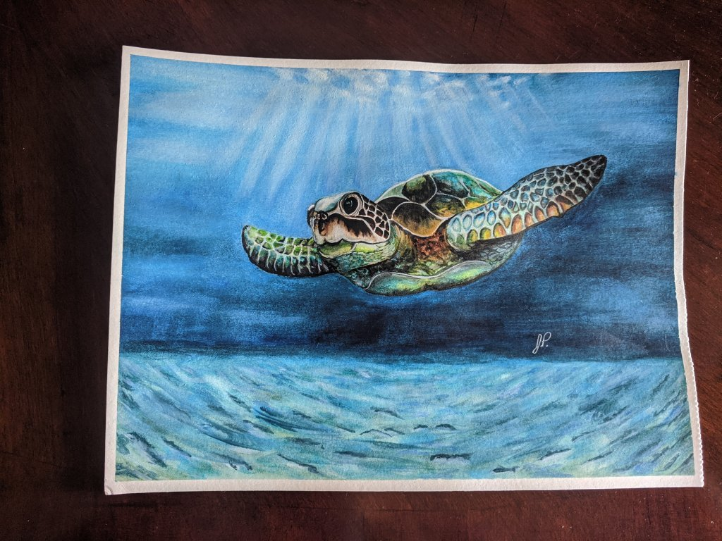 A watercolor I did for a friend a year ago. IMG_20200620_181535