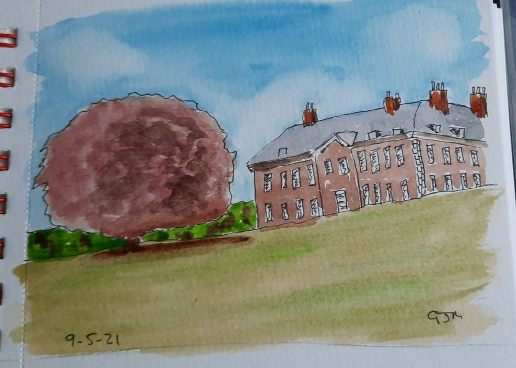 A copper beech tree at Uppark House. #doodlewashmay2021 Day 10 Tree. #worldwatercolorgroup 20210509_