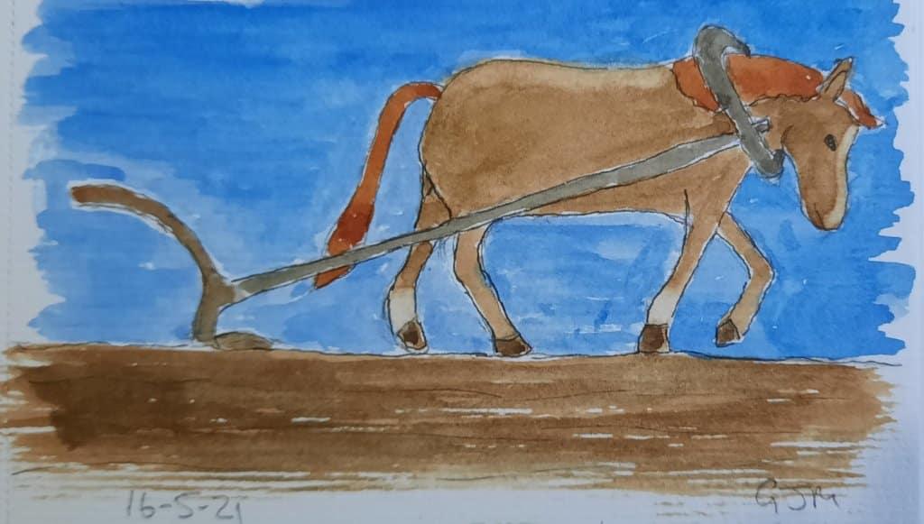 #doodlewashmay2021 Day 17 Farming. #worldwatercolorgroup 20210516_195641