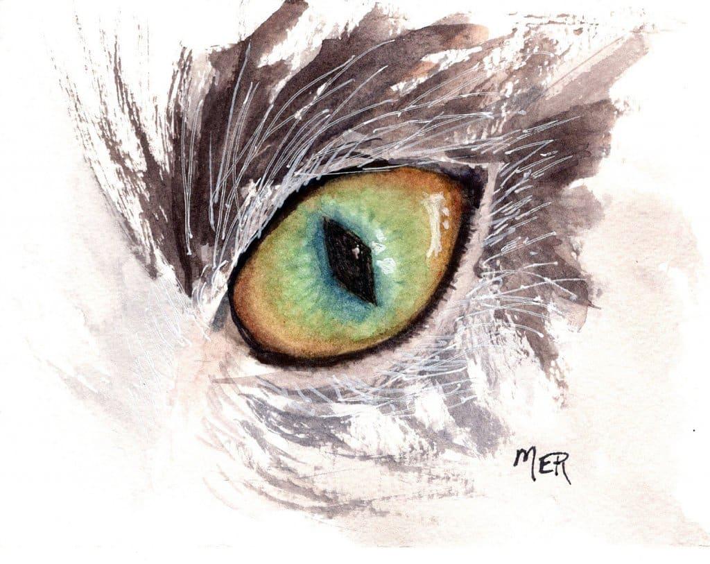 5/19/21 Eye – our AlliCat 5.19.21 Eye img002