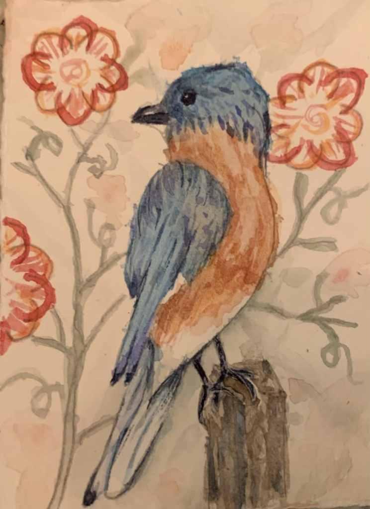 Bluebird 95CD0FE8-06E3-422C-9627-1C4967C41C60