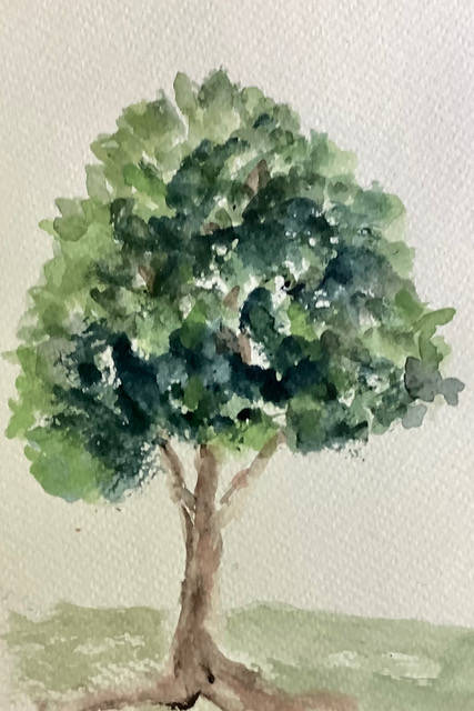 #doodlewashmay2021 day 10 Tree – This one, as a fully leafed out archetypal tree, is a forerun