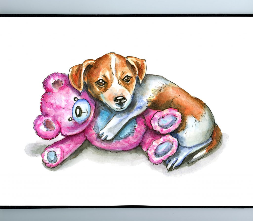 Puppy With Teddy Bear Jack Russell Watercolor Illustration Sketchbook Detail