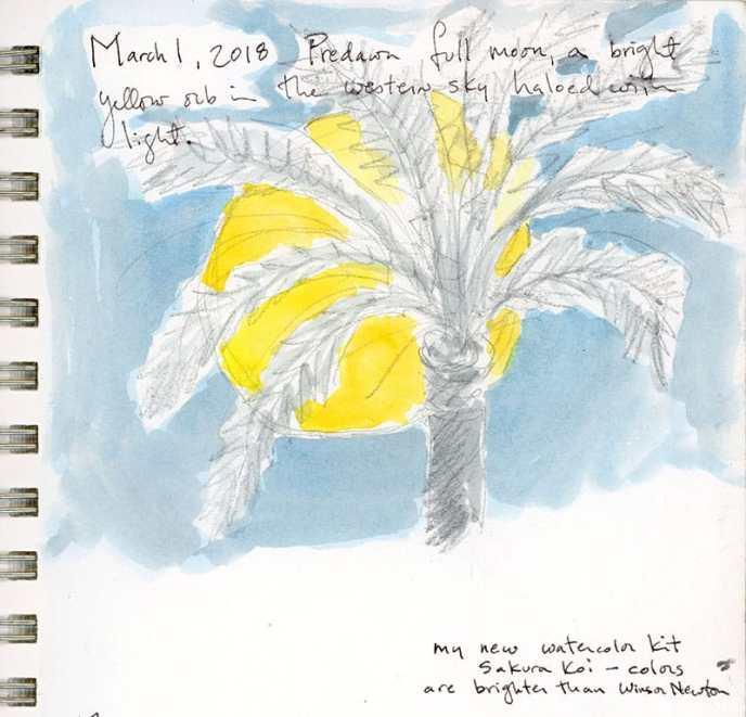 sketchbook notes tiptoeing into brightness 2018 by Rebecca Fish Ewan