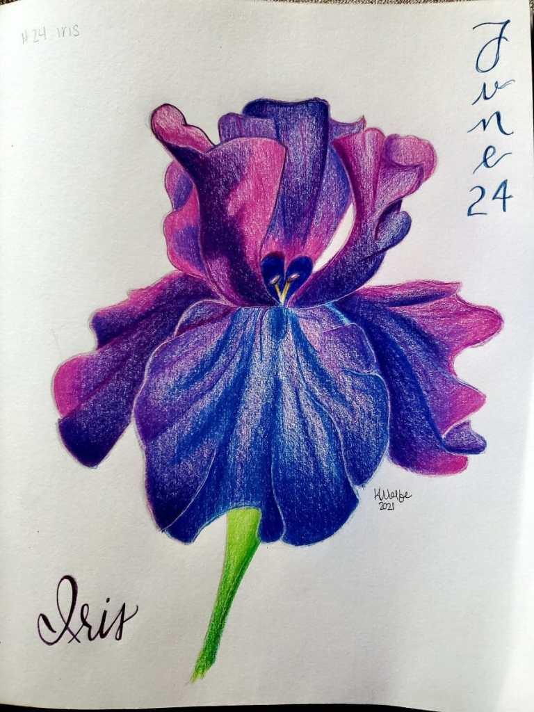 Day 24- iris, my mother's favorite flower 20210624_191103