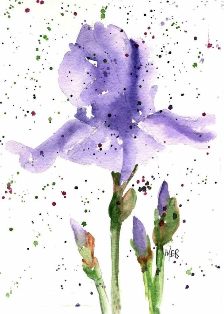 6/24/21 Iris 6.24.21 Iris img001