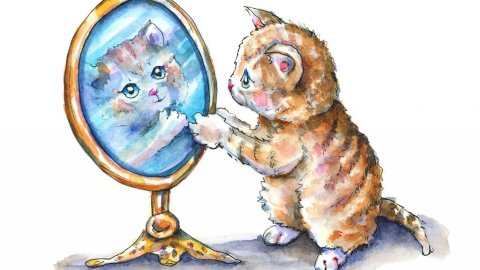 Cat Looking In Mirror Tabby Watercolor Illustration Painting