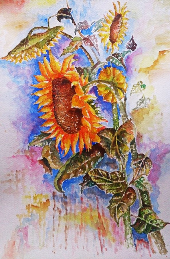 Sunflower Watercolor Painting by Seyedeh Ayeh Mirrezaei