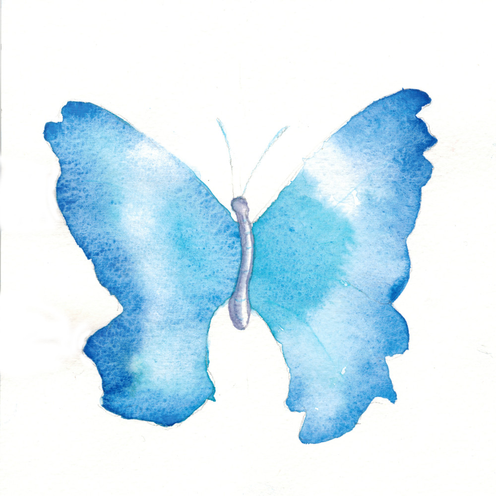 Another exercise from 101 Watercolor Techniques. Ex.9 Butterfly. LEAD Technologies Inc. V1.01