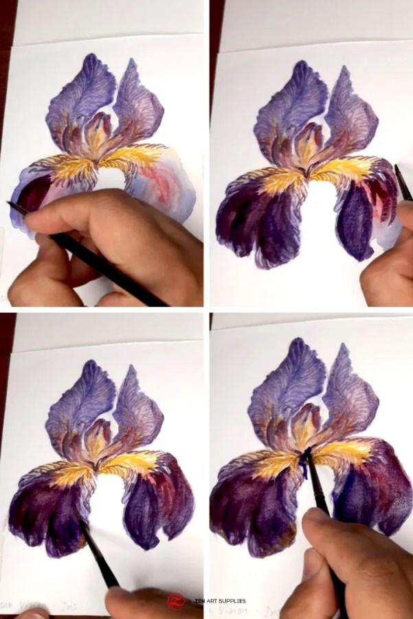 Final Steps Painting Watercolor Iris