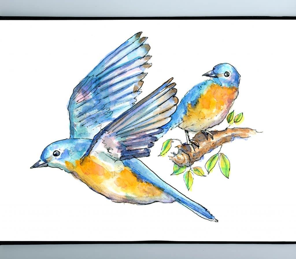 Bluebird Flying Two Birds Watercolor Illustration Painting Sketchbook Detail