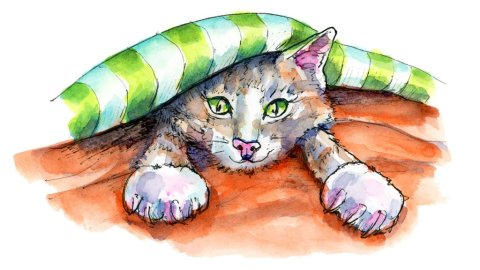 Cat Kitten In Bed Under Covers Watercolor Illustration Painting