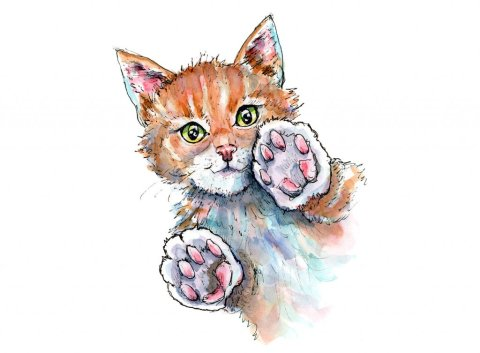 Cat Paws Playing Patty Cake Pat-a-cake Watercolor Illustration Painting