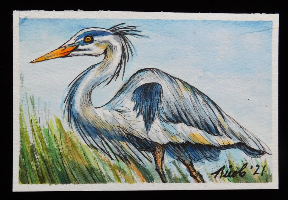 Prompt: Focused Day 26 Heron with Attitude G Heron with Attitutde