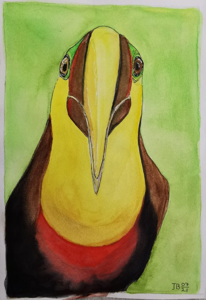 Wonky-eyed Toucan in watercolor. IMG_20210718_172322